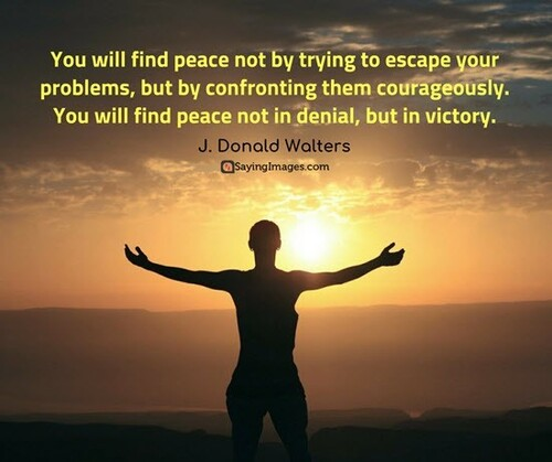 You will find peace not by trying to escape your problems, but by confronting them courageously.  You will find peace not in denial, but in victory.  (J. Donald Walters)