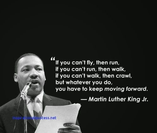 """If you can't fly, then run.  If you can't run, then walk.  If you can't walk, then crawl, but whatever you do, you have to keep moving forward."" Martin Luther King Jr."